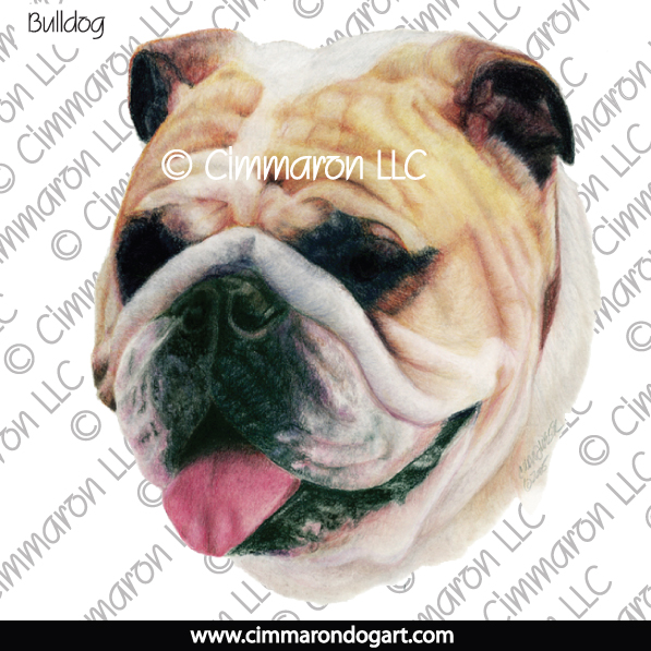 bulld005n - Bulldog Drawing Note Cards