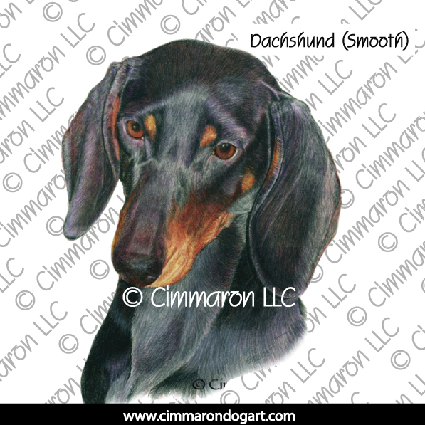doxie009s - Dachshund (Smooth) Portrait Sweatshirt