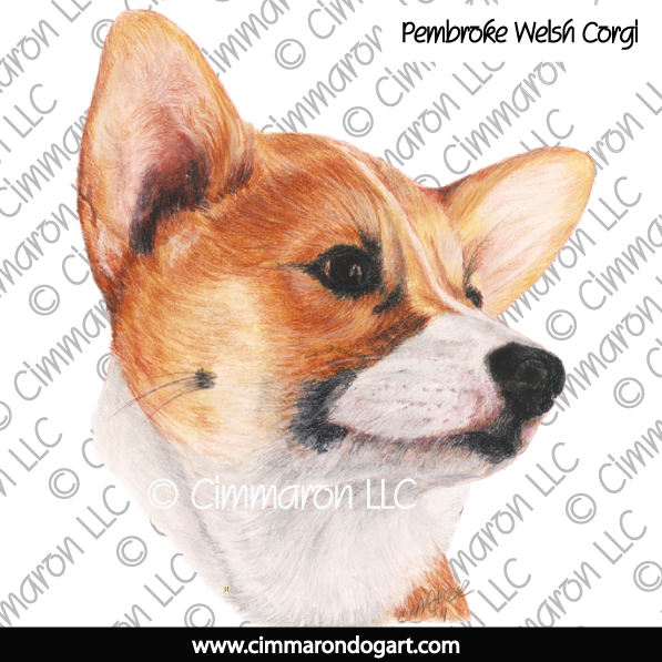 corgi019n - Corgi-Pembroke Tipped Coat Note Cards