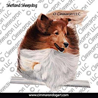 sheltie006n - Shetland Sheepdog Jumping Color Note Cards