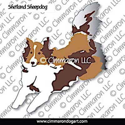 sheltie005n - Shetland Sheepdog Agility Color Note Cards